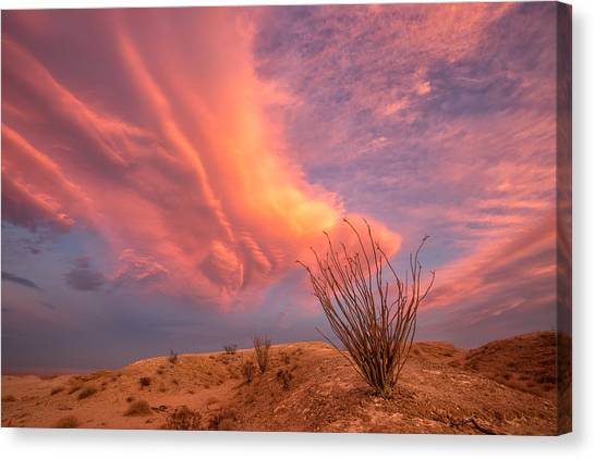 Big Sky Canvas Print - Life In The Fishbowl by Peter Tellone