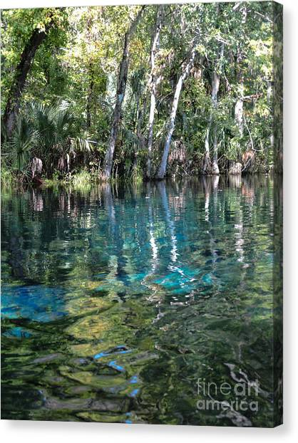Life In The Water Canvas Print