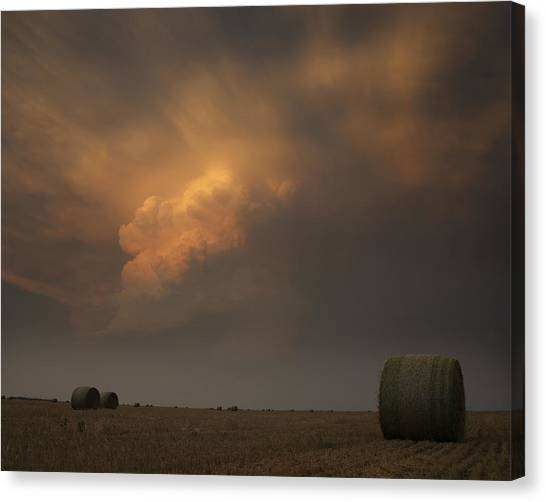 Life On The Plains Canvas Print