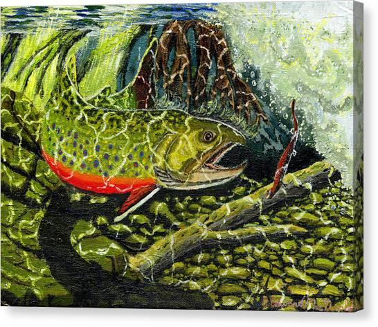 Life Under The Brook Canvas Print