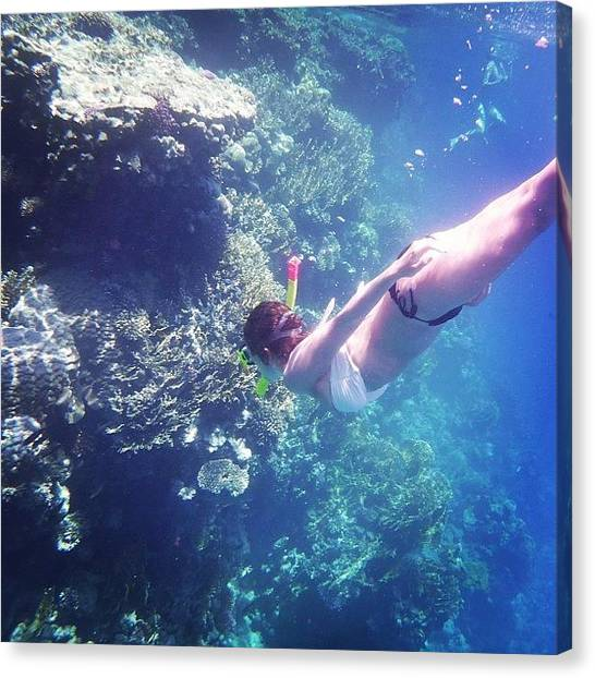 Snorkling Canvas Print - Life's Good❤☀🐠👍 #egypt by Heidi Taule