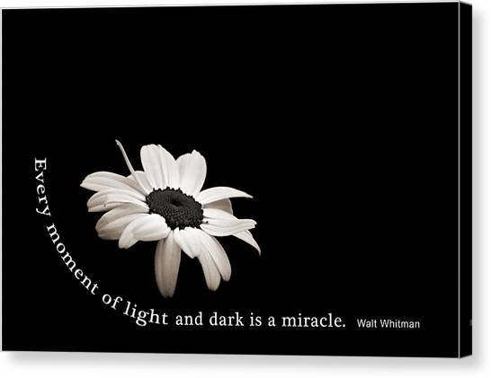 Light And Dark Inspirational Canvas Print