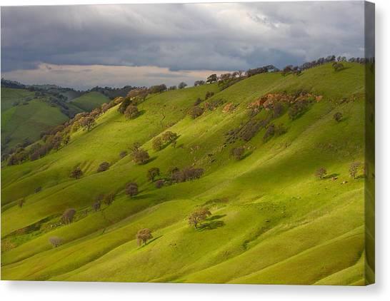Light And Shadows On A Green Hillside Canvas Print