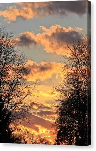 Light Catcher Canvas Print