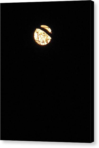 Light In A Dark Season Canvas Print
