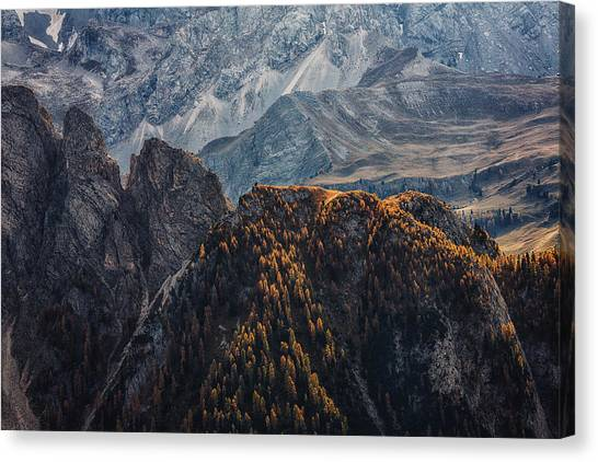 Light Of Autumn Canvas Print by Uschi Hermann