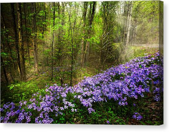 Ocoee Canvas Print - Light Of The Forest Fairies by Debra and Dave Vanderlaan
