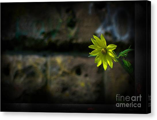 Light On The Dark Side Canvas Print by The Stone Age