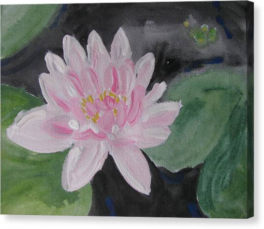 Light Pink Water Lily Canvas Print by Vikram Singh