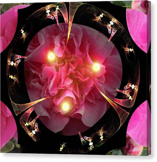 Camellia Canvas Print - Light The Day by Nancy Pauling
