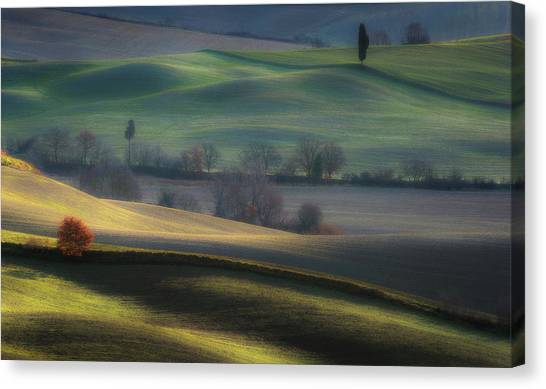 Rolling Hills Canvas Print - Light Transition by Marek Boguszak