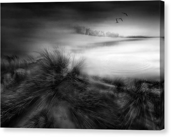 Like A Dream Canvas Print by Fran Osuna