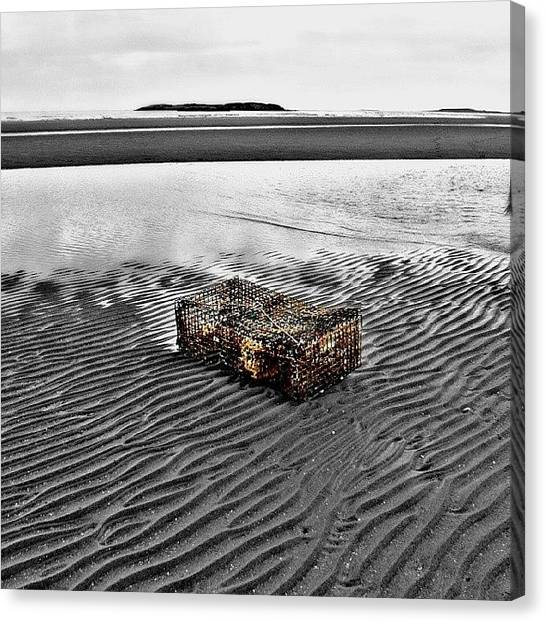 Lobster Canvas Print - Like A Shipwreck Or A Jetty, Almost by Sarah Watson