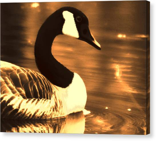 Lila Goose The Pond Queen Sepia Canvas Print