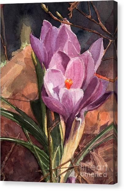 Lilac Crocuses Canvas Print