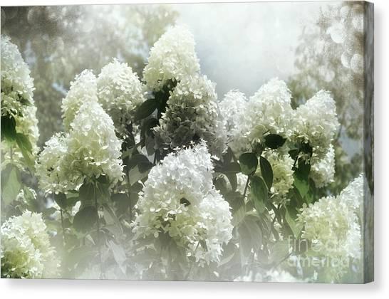 Lilac Cloud Canvas Print