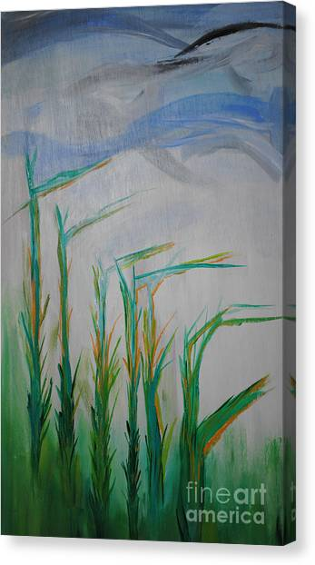 Lillies Of The Creek Canvas Print