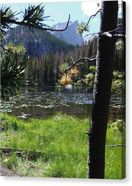 Lilly Lake Canvas Print by Stephen Schaps