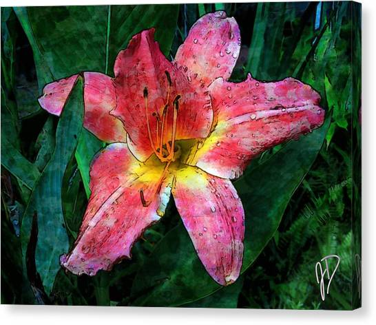 Lilly Of The Rain Canvas Print