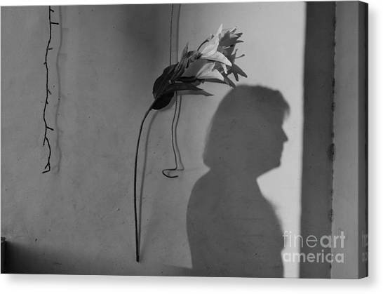 Lily And Male Figure Shadow Canvas Print