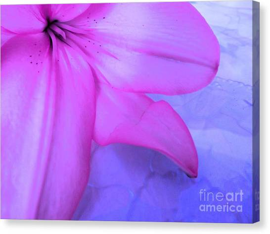 Lily - Digital Art Canvas Print