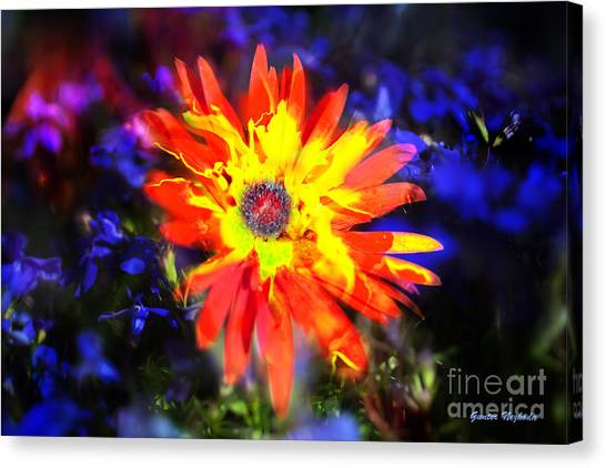 Lily In Vivd Colors Canvas Print