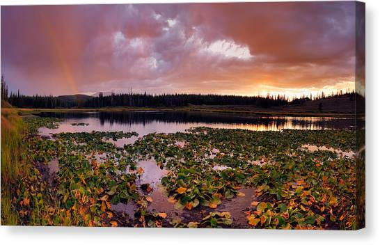 Teton National Forest Canvas Print - Lily Lake by Leland D Howard