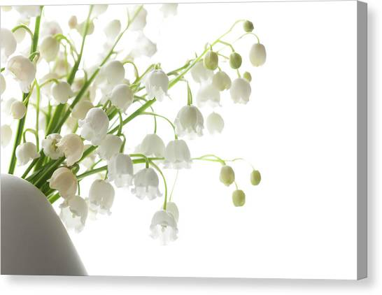 Vase Of Flowers Canvas Print - Lily Of The Valley In A Vase, Highkey by Ingmar Wesemann