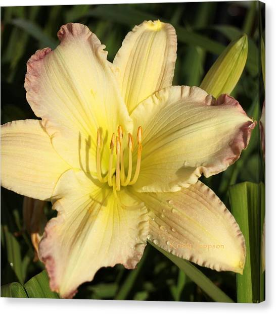 Lily Square Canvas Print