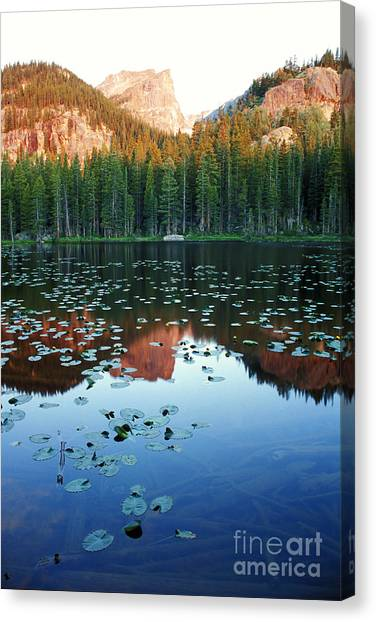 Lilypad Pond With Hallet Peak Canvas Print