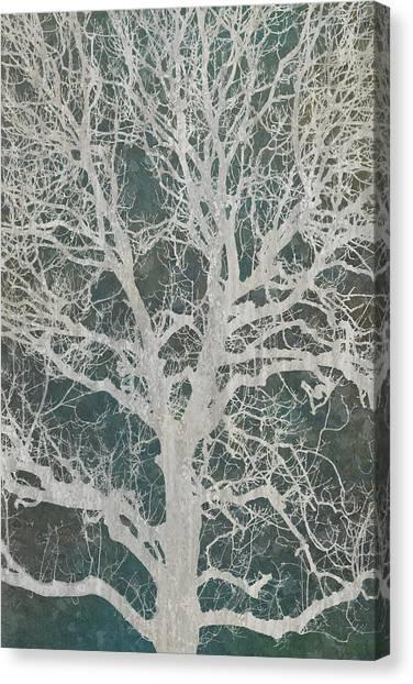 Autumn Canvas Print - Linden Tree by Cora Niele