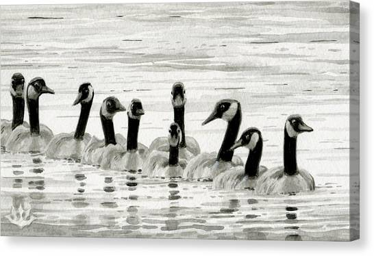 Line Of Geese Canvas Print