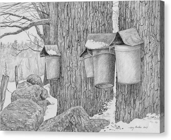 Line Of Sap Buckets Canvas Print