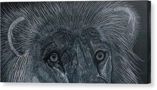 Lion Eyes  African King Detail Canvas Print