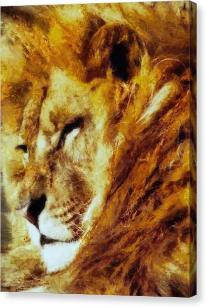 Nature Canvas Print - Lion In Repose by Georgiana Romanovna