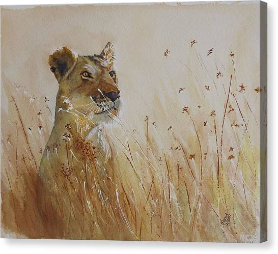 Lion In The Weeds Canvas Print