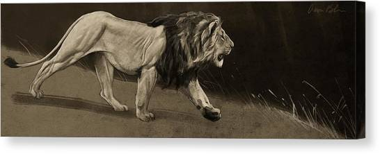 Lion Sketch Canvas Print by Aaron Blaise