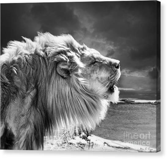 Lions Breath Canvas Print