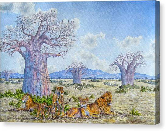 Lions By The Baobab Canvas Print