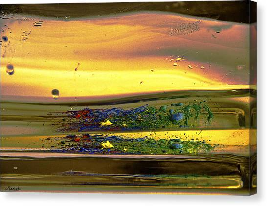 Liquid Motion 1 Canvas Print