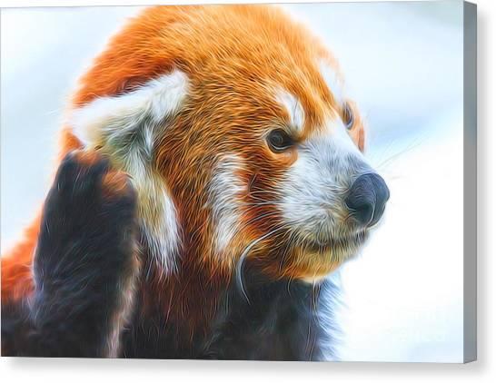 Listening Red Panda Canvas Print