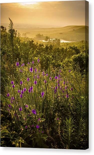 Prairie Sunrises Canvas Print - Lit Up by Scott Bean