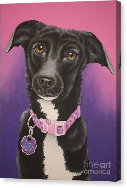 Little Black Dog Canvas Print