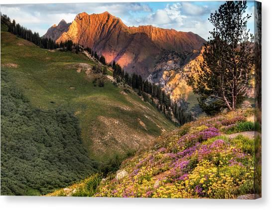 Little Cottonwood Canyon Near Alta Utah Canvas Print