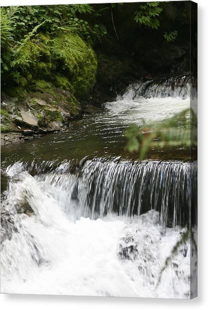 Little Creek Falls Canvas Print