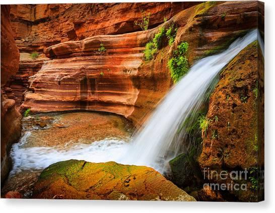 Colorado River Canvas Print - Little Deer Creek Fall by Inge Johnsson