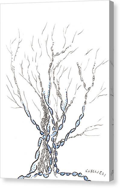 Little Dna Tree Canvas Print