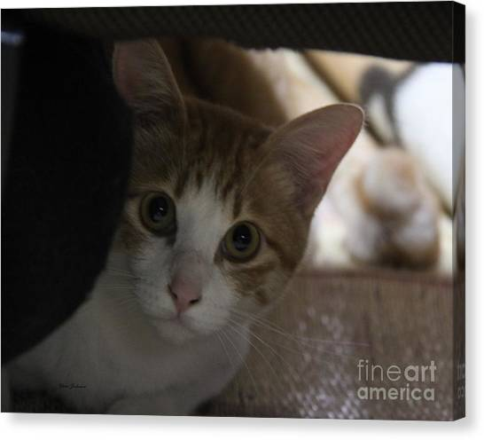Little Face Canvas Print by Yumi Johnson