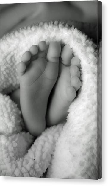 Little Feet Canvas Print by Mamie Thornbrue