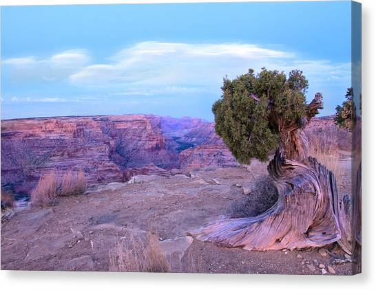 Little Grand Canyon Canvas Print